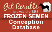 Frozen Semen Conception Database Stallions Breeding Reports Breeders