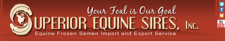 Superior Equine Sires Equine Frozen Semen Import Export Warmblood Sport Horse Breeds Sporting Horse Frozen Semen